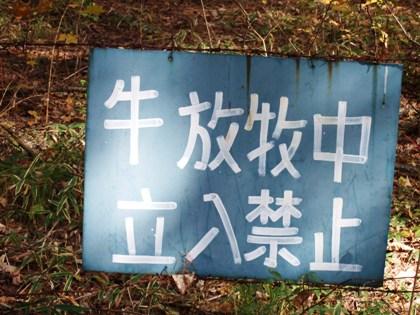 八ヶ岳-04.jpg